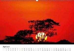 KRÜGER NATIONALPARK Afrikas Perle (Wandkalender 2017 DIN A2 quer