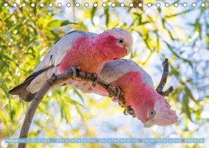 Papageien: Farbenpracht im Flug