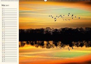 Terminplaner - Friesland, wo die Natur sich spiegelt