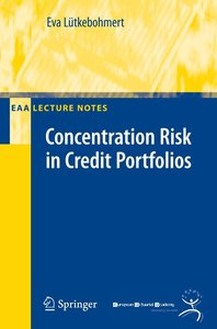 Concentration Risk in Credit Portfolio