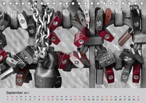 Eyecatcher - Eine Farbe dominiert (Tischkalender 2017 DIN A5 que