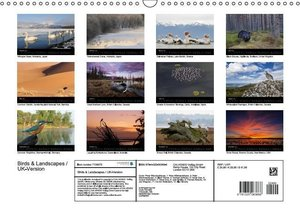 Birds & Landscapes / UK-Version (Wall Calendar 2016 DIN A3 Lands
