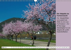 Reise in die Südpfalz (Wandkalender 2017 DIN A3 quer)