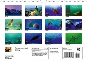 Consequence of Diving (Wall Calendar 2015 DIN A4 Landscape)