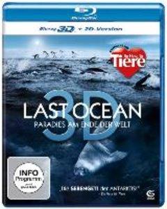 Last Ocean 3D - Paradies am Ende der Welt