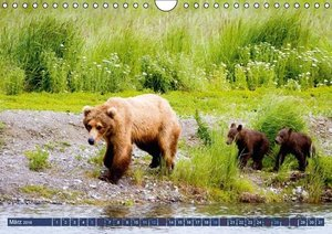 Alaska: Schneeberge und Meer (Wandkalender 2016 DIN A4 quer)