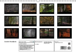 Scottish Woodlands (Wall Calendar 2015 DIN A3 Landscape)