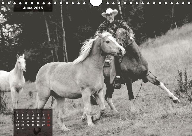 lively horses on the Crazy Horse Ranch (Wall Calendar 2015 DIN A - zum Schließen ins Bild klicken