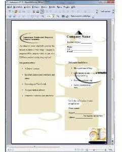 Open Office V3.3 Pro für Ein- und Umsteiger