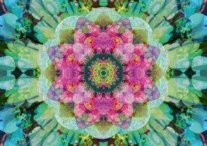 Ornements floraux d'Alaya Gadeh (Livre poster DIN A3 horizontal)