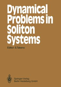 Dynamical Problems in Soliton Systems