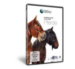 Alles über Pferde-Discovery World