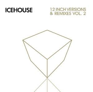 12 Inch Versions & Remixes-Vol.2