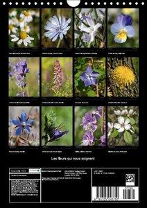 Les fleurs qui nous soignent (Calendrier mural 2015 DIN A4 verti