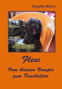 Flexi - Vom kleinen Vampir zum Kuscheltier