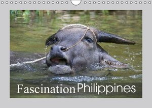 Fascination Philippines (Wall Calendar 2015 DIN A4 Landscape)