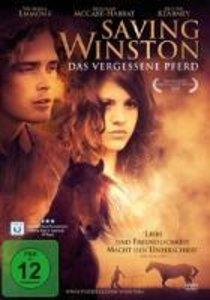 Saving Winston-Das Vergessene Pferd