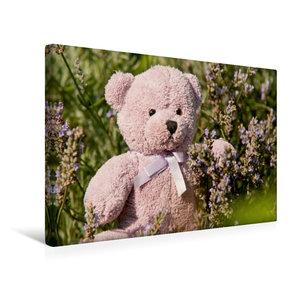 Premium Textil-Leinwand 45 cm x 30 cm quer Lila Lavendelbär