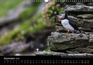 Ireland´s West / UK-Version (Wall Calendar 2015 DIN A3 Landscape