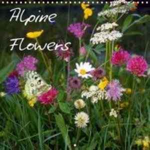 Alpine Flowers (Wall Calendar 2015 300 × 300 mm Square)