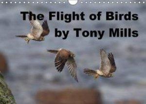 The Flight of Birds by Tony Mills (Wall Calendar 2015 DIN A4 Lan
