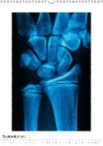Structures of the human bones (Wall Calendar 2015 DIN A3 Portrai