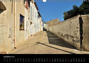 Camargue Entre mer et nature (Calendrier mural 2015 DIN A3 horiz