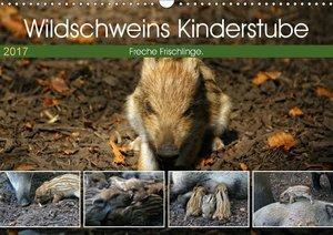 Wildschweins Kinderstube 2017 (Wandkalender 2017 DIN A3 quer)