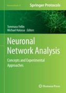 Neuronal Network Analysis