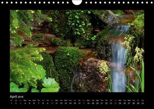 The Black Forest - UK Version (Wall Calendar 2016 DIN A4 Landsca