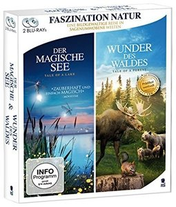 Wunder des Waldes & Der magische See