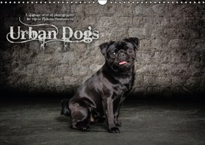 Urban Dogs - a singular style of dog photography / UK-Version (W
