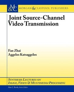 Joint Source-Channel Video Transmission