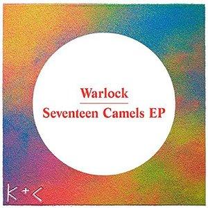 Seventeen Camels