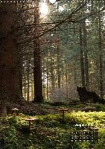 Backlighting in the forest (Wall Calendar 2015 DIN A3 Portrait)