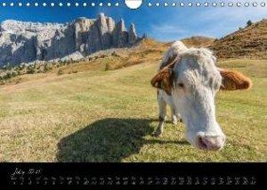 Dolomites / UK-Version (Wall Calendar 2015 DIN A4 Landscape)