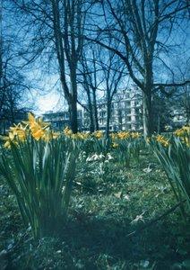 Camera Obscura Edition Baden-Baden (Posterbuch DIN A3 hoch)