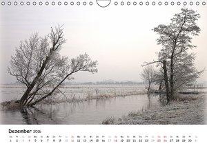 Unterwegs im Teufelsmoor (Wandkalender 2016 DIN A4 quer)