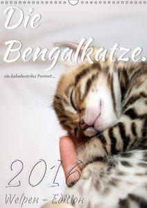 Die Bengalkatze. Welpen-Edition