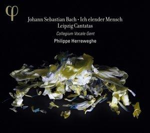 Leipziger Kantaten BWV 44/48/73/109