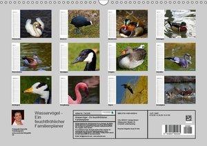 Wasservögel - Ein feuchtfröhlicher Familienplaner (Wandkalender