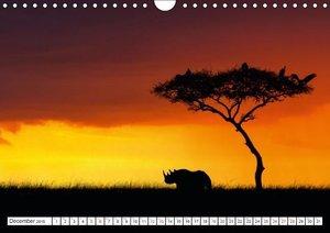 Gerlach, I: Emotional Moments: Rhinos UK Version