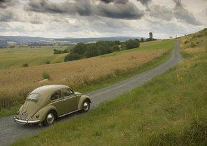 The Beetle (Poster Book DIN A4 Landscape)