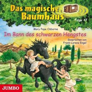 Das Magische Baumhaus 47/Im Bann Des Schwarzen Hen
