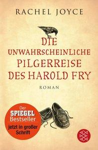 Die unwahrscheinliche Pilgerreise des Harold Fry (Großdruck-Aus