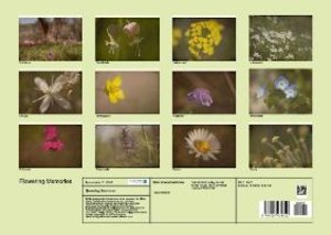 Flowering Memories (Poster Book DIN A3 Landscape)