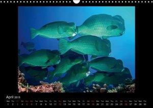 Ocean-Art / UK-Version (Wall Calendar 2015 DIN A3 Landscape)