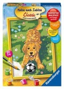 Ravensburger 28217 - Malen nach Zahlen: Hund mit Fußball
