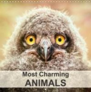 Most Charming Animals (Wall Calendar 2015 300 × 300 mm Square)