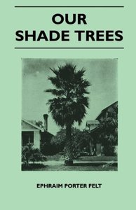 Our Shade Trees